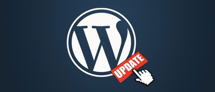 Another Important WordPress Update