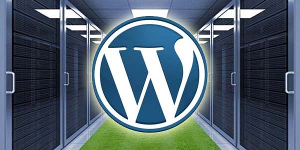 How To Host Multiple WordPress Websites